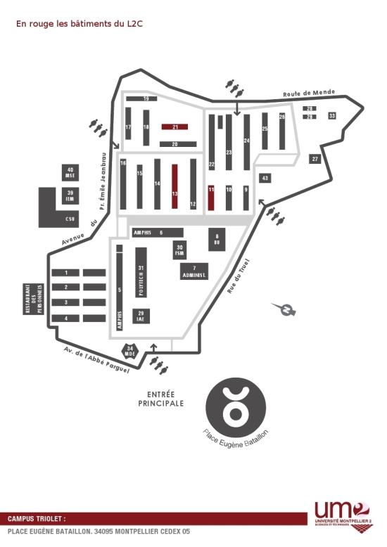 Campus de Triolet Plan